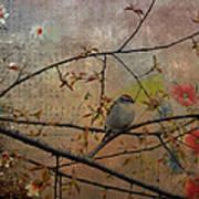 Spring Bird Art Print
