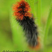 Spring Caterpillar Art Print