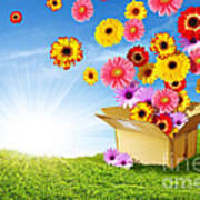 Spring Delivery Art Print by Carlos Caetano