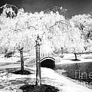 Spring In Infrared Art Print