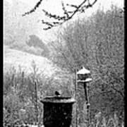 Spring Snowstorm 2012 Art Print