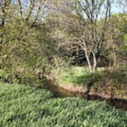 Springtime Meadow Art Print