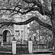 St. Charles Ave. Monochrome Art Print