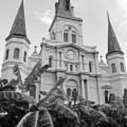 St Louis Cathedral Rising Above Palms Jackson Square French Quarter New Orleans Black And White Art Print