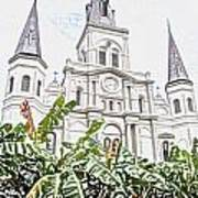 St Louis Cathedral Rising Above Palms Jackson Square New Orleans Colored Pencil Digital Art Art Print
