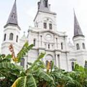 St Louis Cathedral Rising Above Palms Jackson Square New Orleans Diffuse Glow Digital Art Art Print