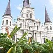 St Louis Cathedral Rising Above Palms Jackson Square New Orleans Film Grain Digital Art Art Print