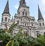 St Louis Cathedral Rising Above Palms Jackson Square New Orleans Poster Edges Digital Art Art Print