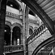 Stairs And Arches Art Print