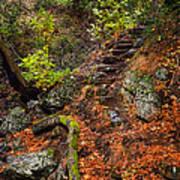 Stairway To The Sky Art Print
