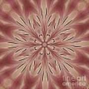 Star Magnolia Medallion 3 Art Print