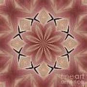 Star Magnolia Medallion 4 Art Print