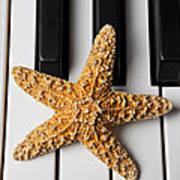 Starfish Piano Art Print