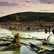 Stater Pond At Sunset Art Print