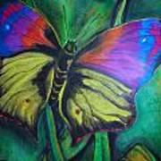 Still Butterfly Art Print by Juliana Dube
