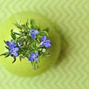 Still Life In Delicate Green Art Print