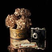 Still Life With Hydrangea And Camera Art Print