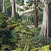 Stoltman Old Growth Forest Landscape Painting Art Print