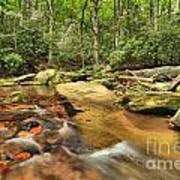 Stone Mountain Stream Art Print