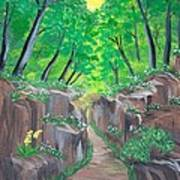 Stone Ravine Art Print