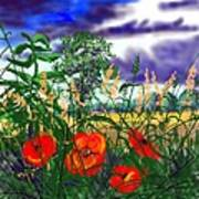 Storm Clouds And Poppies Art Print