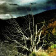 Storm Over The Jemez Mountains Art Print
