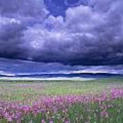 Stormy Clouds Approaching Field Of Art Print