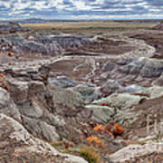 Stormy Morning At Petrified Forest  Art Print