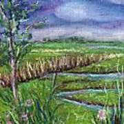 Stormy Wetlands Art Print