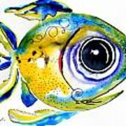 Stout Lookout Fish Art Print