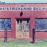 Strickland Grocery Art Print