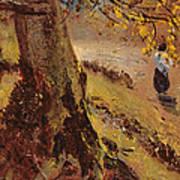 Study Of Tree Trunks Art Print