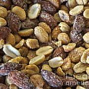 Sugar Coated Mixed Nuts Art Print