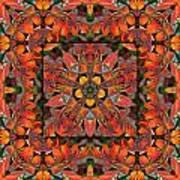 Sumac Autumn Kaleidoscope Art Print