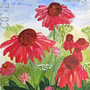 Summer Coneflowers Art Print