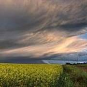 Summer Evening Storm Blowing Over Ripe Print by Dan Jurak