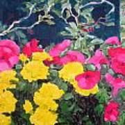 Summer Glory Art Print