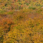 Summit Peak Autumn 15 Art Print