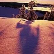 Sun Casting Shadows On Snow Covered Art Print