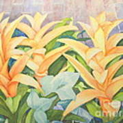 Sun Drenched Art Print by Vikki Wicks
