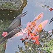 Sun Water Flowers And Fish Art Print
