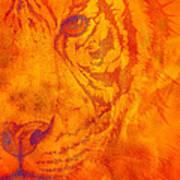 Sunburst Tiger On Fire Art Print