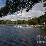 Jamaica Pond Sailing Art Print