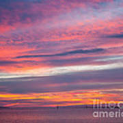 Sundown In Dunedin Art Print