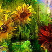 Sunflower 4 Art Print