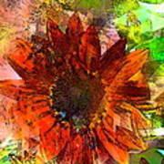 Sunflower 7 Art Print