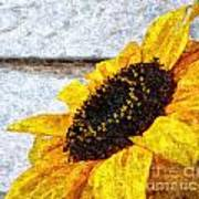 Sunflower Paint Art Print