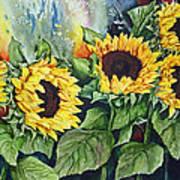 Sunflower Serenade Art Print