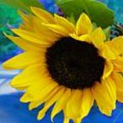 Sunflower Too Art Print