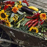 Sunflowers, Dahlias, Eggplants, Pepper Art Print